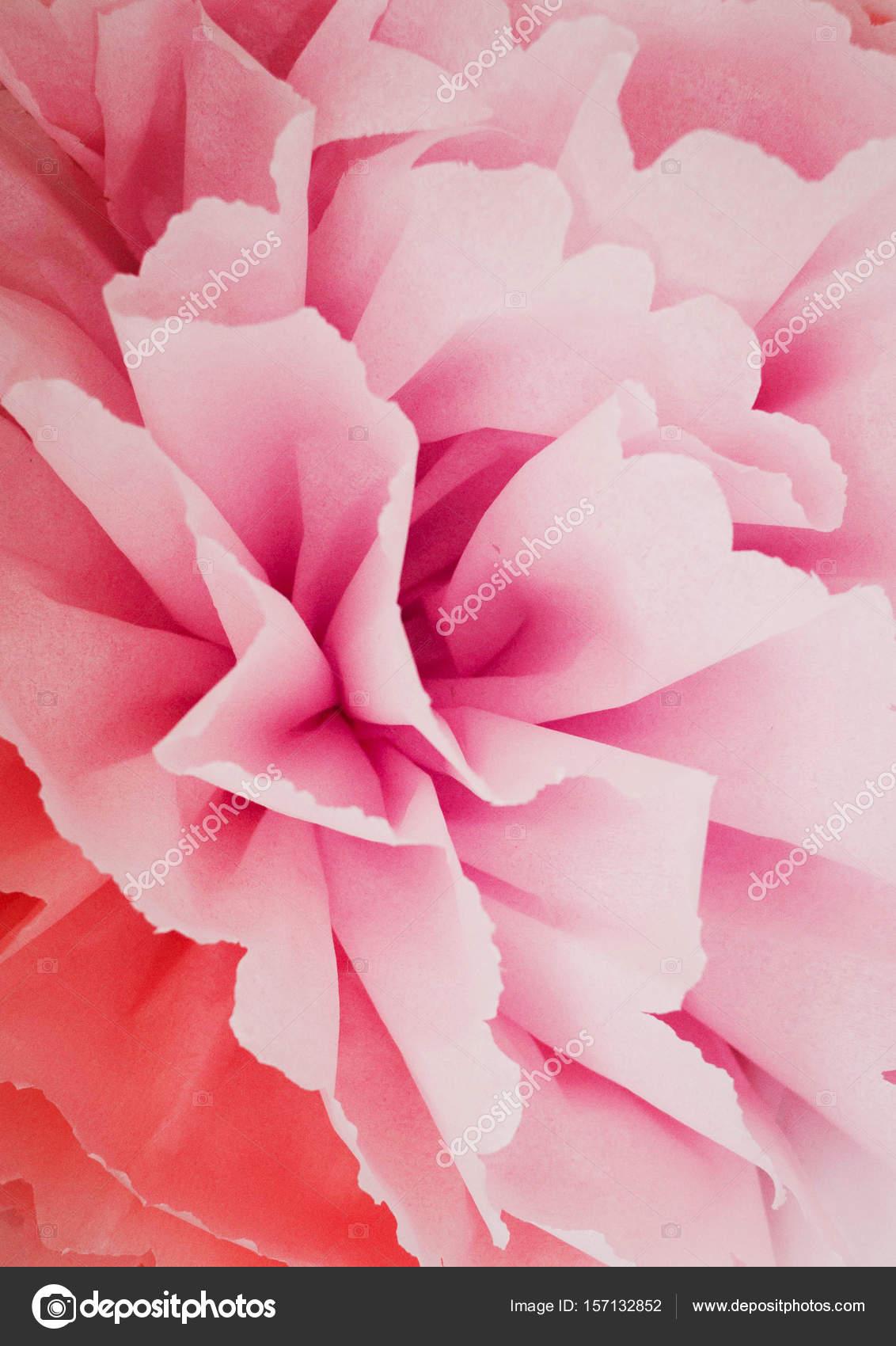Große Blume Rosa Papier Stockfoto Kirilyukrmyahoocom