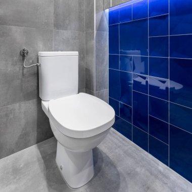 Simple white toilet