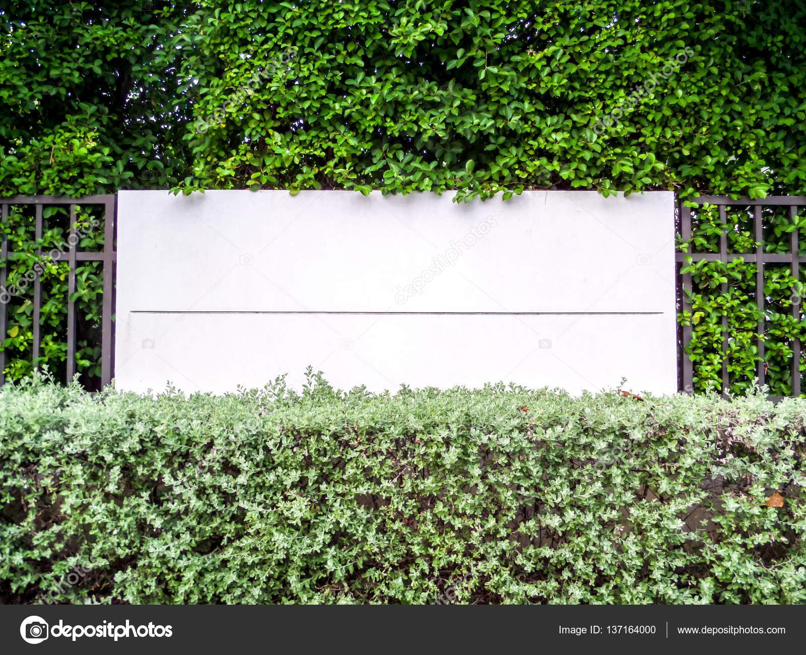 Beton Zaun Im Garten Der Natur Mit Mauer Pflanzen Und Rasen U2014 Foto Von  Darkfoxelixir@yahoo.com