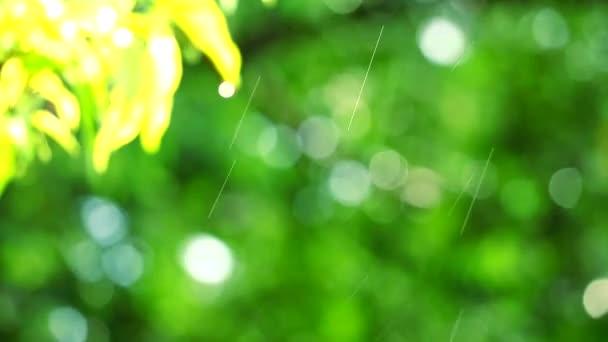 pánev rozmazané kapky deště v zahradě a zelené listy pohybující se větrem