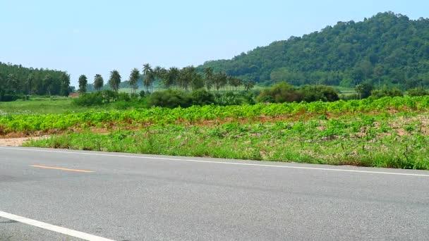 V podhůří krajiny, výsadba kasavy a ekonomických plodin, kvůli příznivým povětrnostním podmínkám pro dobrou produkci