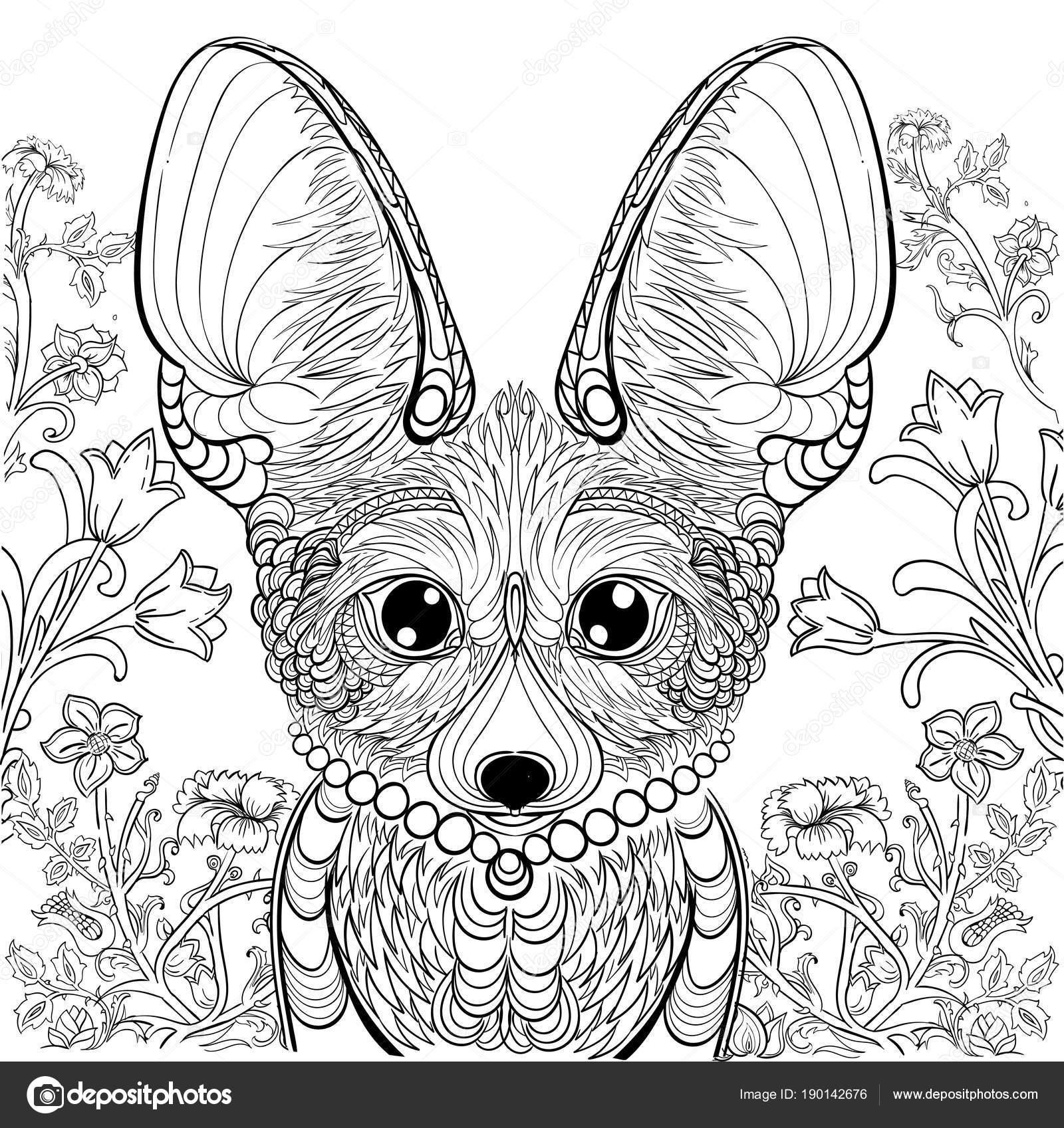 Volpe fennec ed elementi floreali per il libro da colorare - Pagina da colorare fennec fox ...