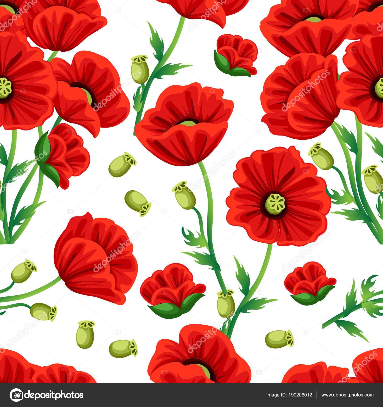 De patrones sin fisuras. Flor de Amapola roja con hojas de color ...