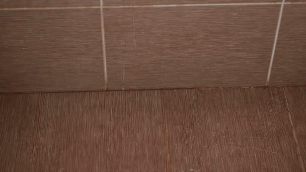 Průsak vody v koupelně. Nehoda. Voda na podlaze.