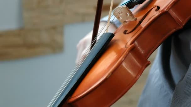 Closeup playing the violin. Seven years old boy playing the violi