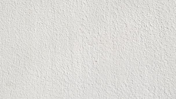 Textura de pared de pintura blanca v deos de stock for Pintura satinada blanca para puertas