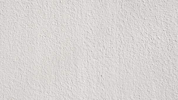 Bílé zdi textury s omítkou