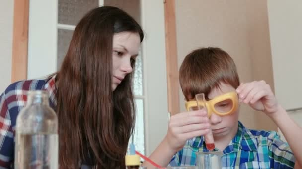 Chemistry Experiments At Home Mom And Son Make A Chemical Reaction With The Release Of Gas In The Test Tube Stock Footage
