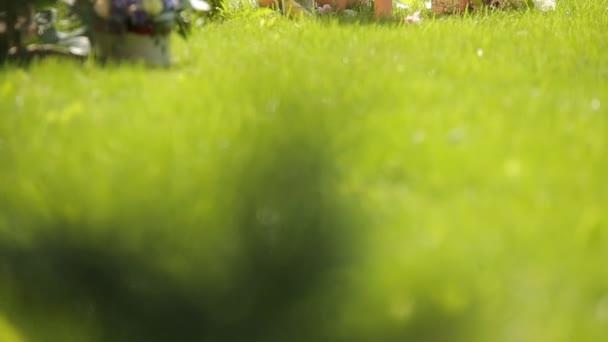 sorridente ragazza abbastanza giovane modello biondo europeo fare splendide decorazioni di ricezione rustico - un arco floreale che si siede sullerba fresca verde smeraldo