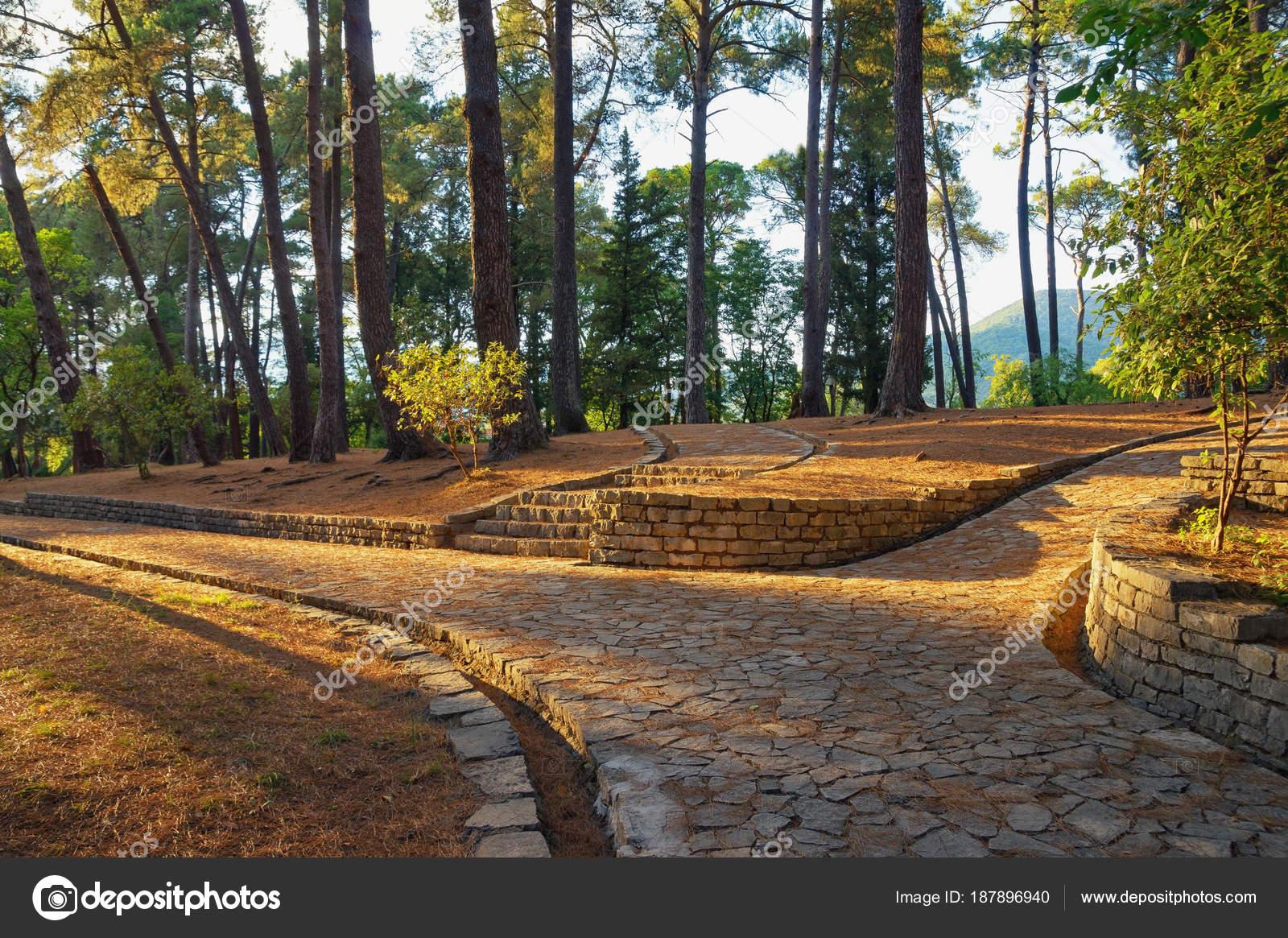 Pathways in park. Montenegro, view of botanical garden in Tivat city ...