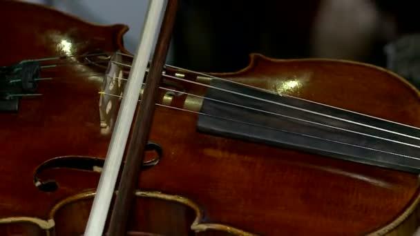 Hegedű koncert élő női kezek hegedülni részlete