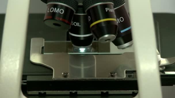 Nahaufnahme der Untersuchung der Probe unter dem Mikroskop im Labor.