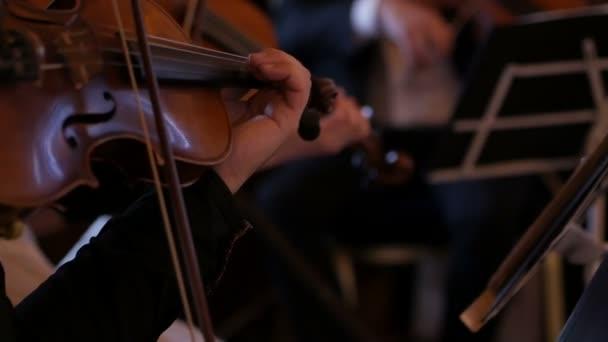Közelkép egy hegedűsről, aki hegedül egy próbán.