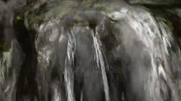 Horské řeky vodopád v lese. Média s audio stopou