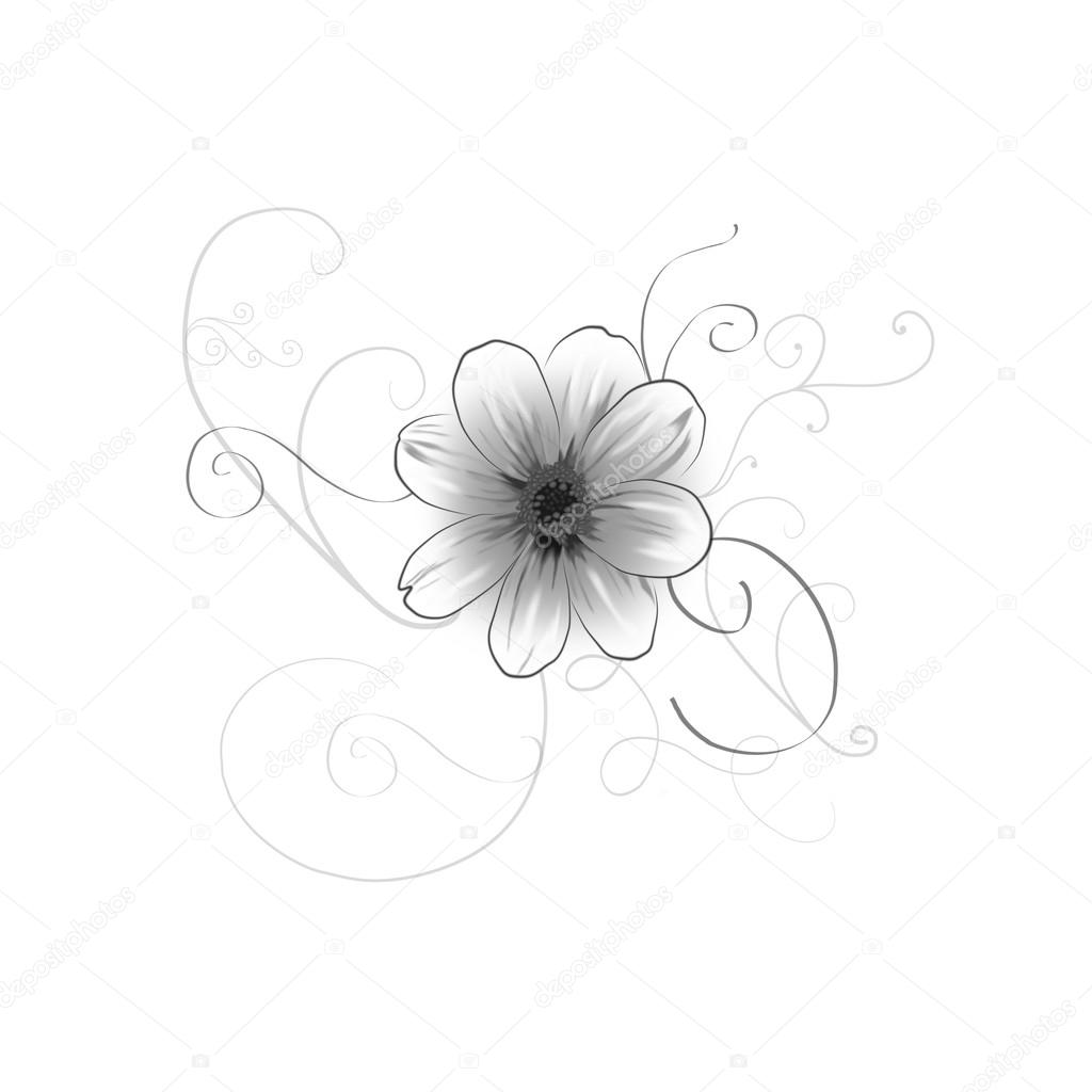 Nice Line Drawing Of A Summer Flower Stock Photo