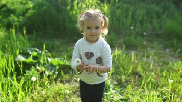 malá dívka dává Pampeliška květin nám