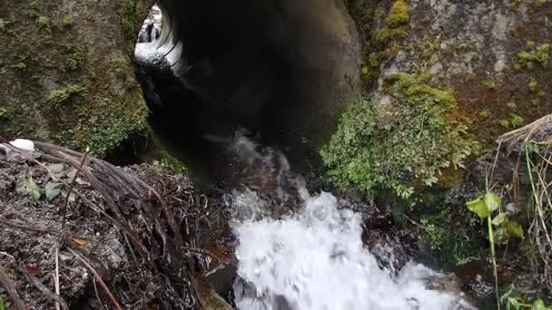 Proud teče pod mostem v lese, tekoucí voda potrubím v lese