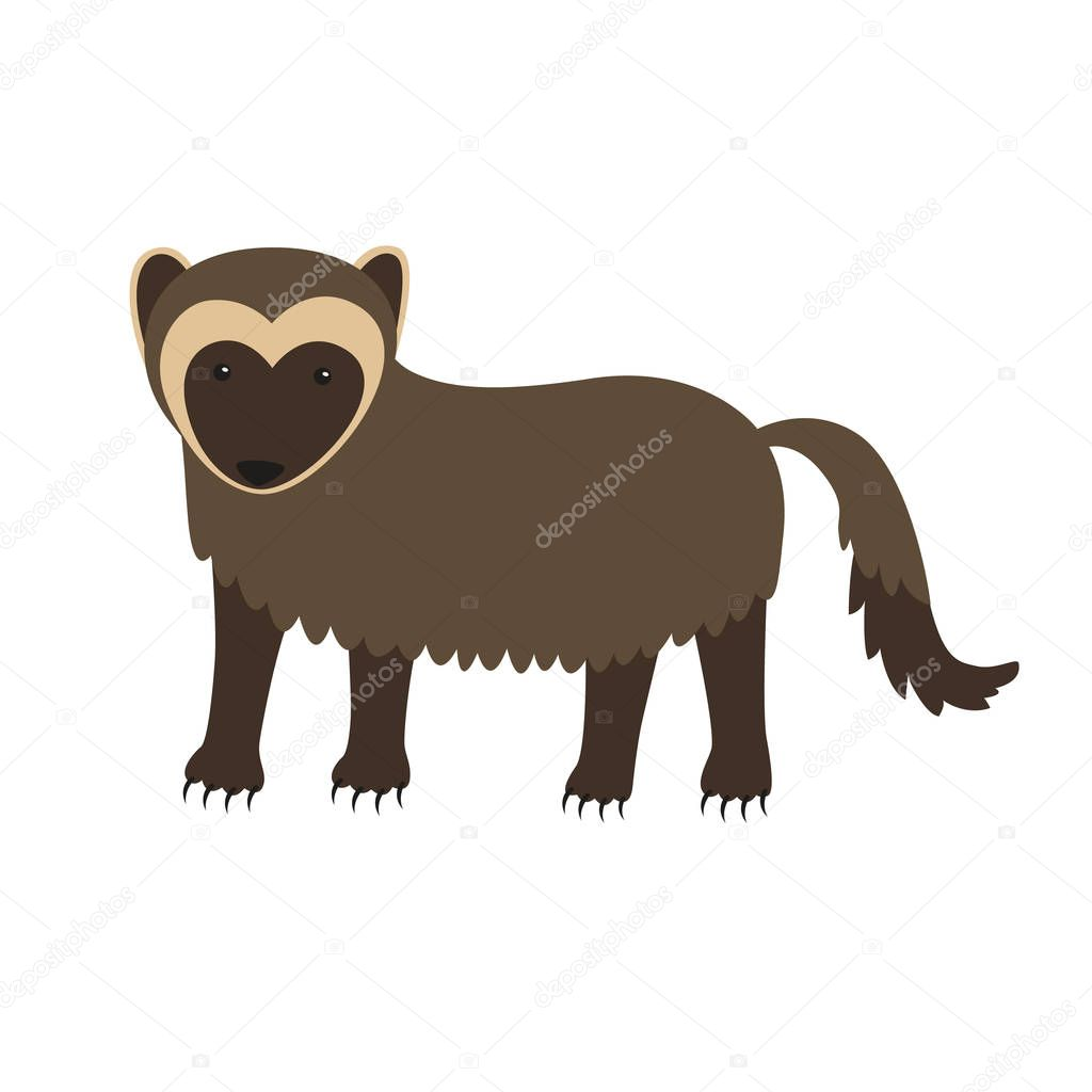Wolverine animal cartoon character isolated on white background.