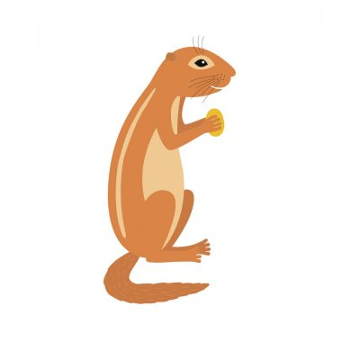Xerus African ground squirrel holding nut animal cartoon character
