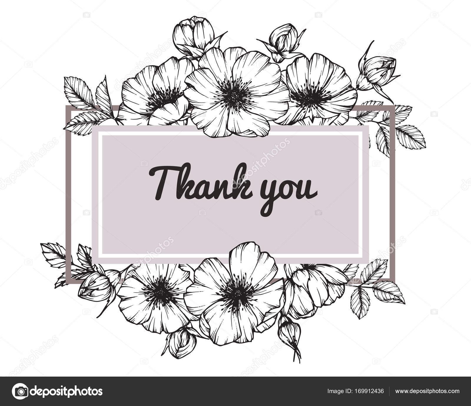Quadro flor rosa selvagem. Sketch com linha preta e branca-arte e ...