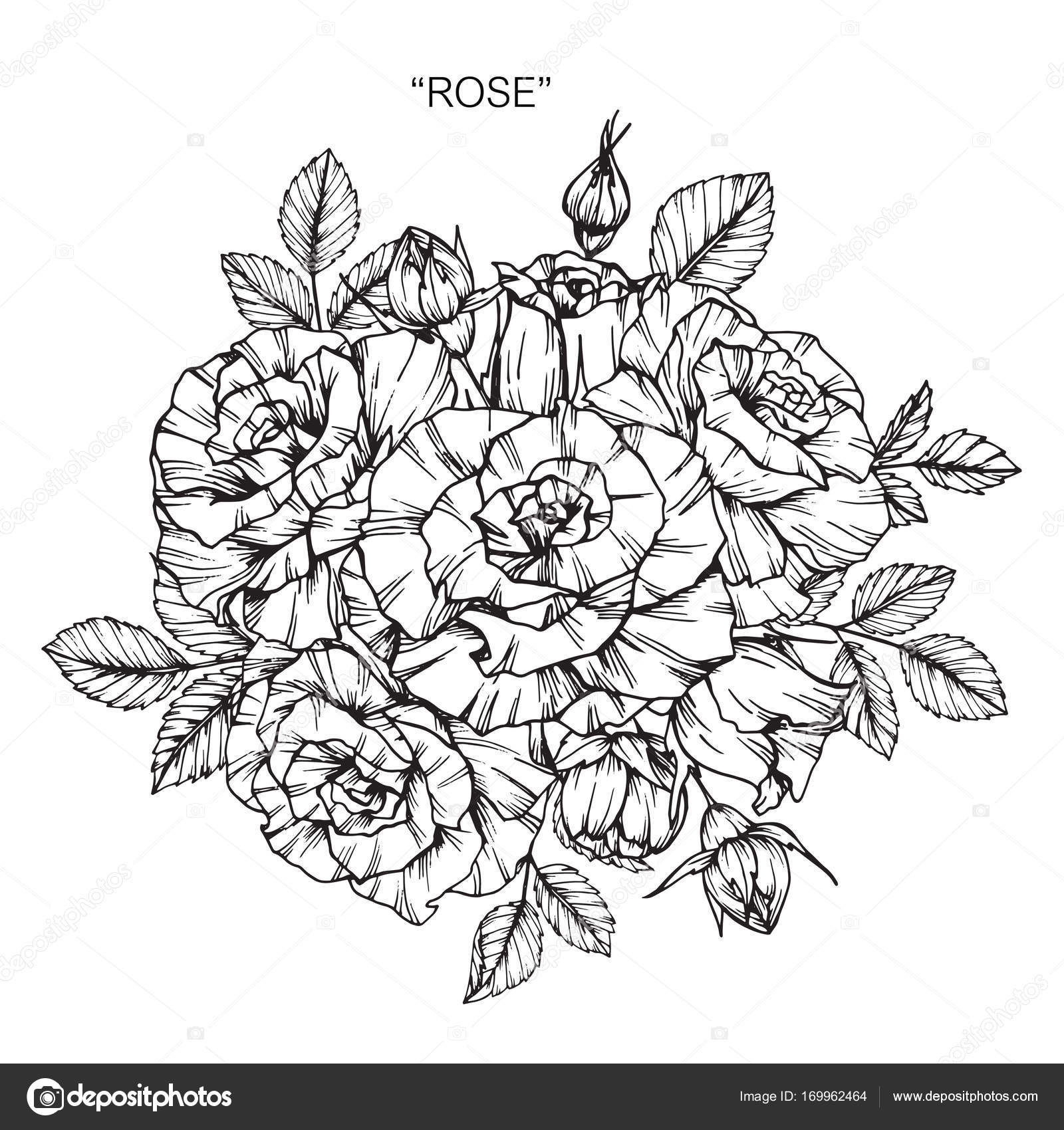 Im genes dibujo de ramo de rosas ramo de rosas dibujo - Dessin de rose a colorier ...