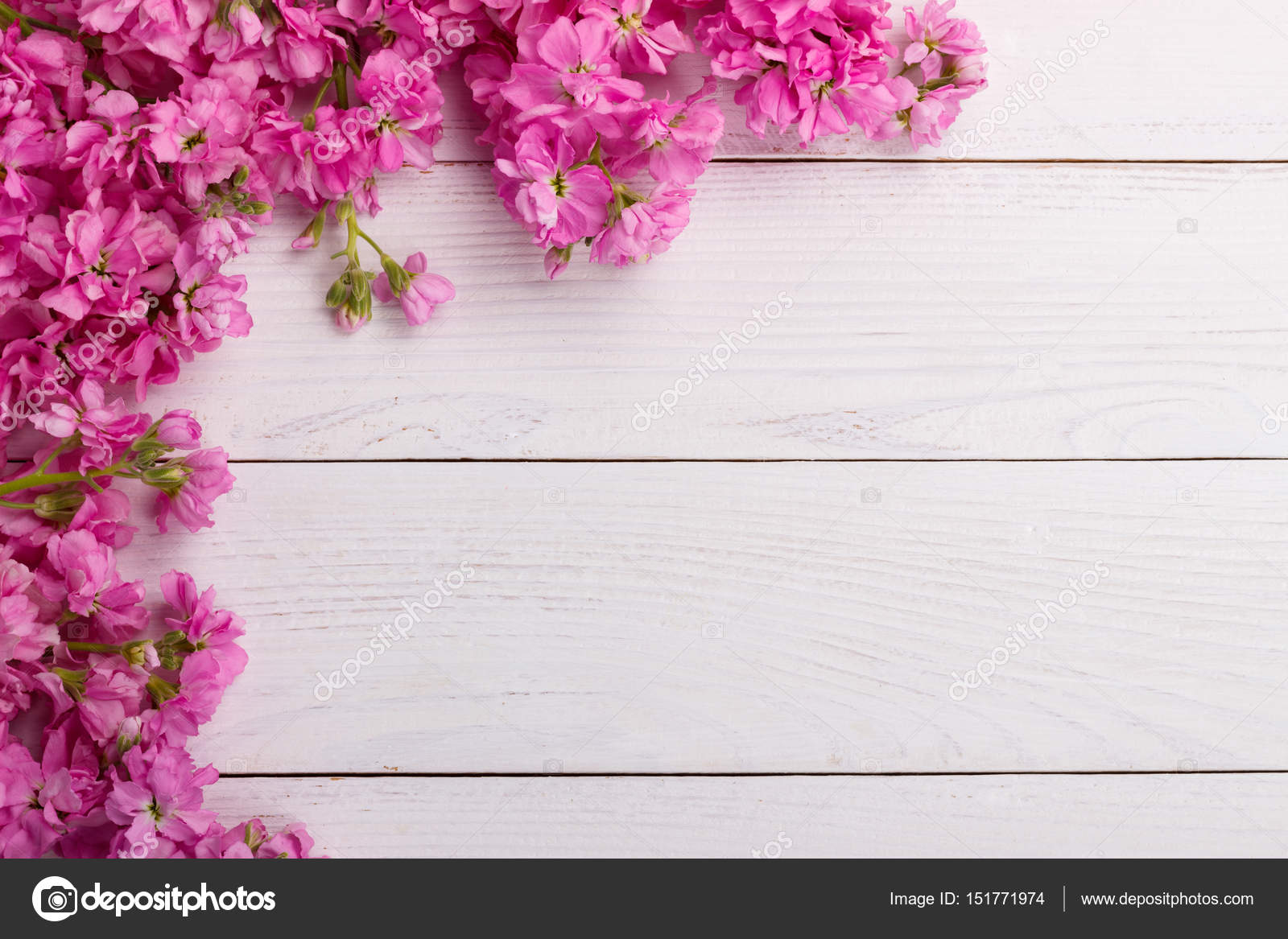 Pink Flowers On Wooden Background Stock Photo Lanam 151771974