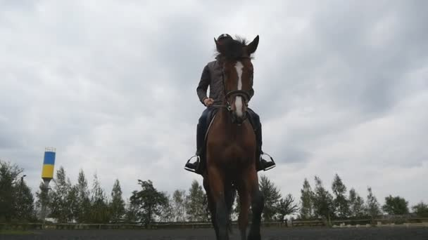 junger Mann reitet im Freien. Jockey beim Joggen in der Manege am Bauernhof an einem Sommertag. schöne Natur im Hintergrund. Hengst aus nächster Nähe. Liebe zu Tieren. Zeitlupe. Frontansicht