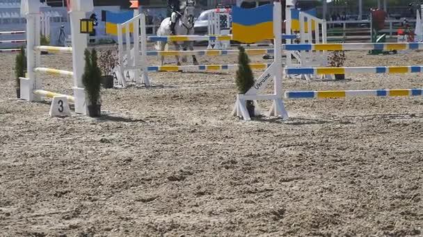 Cavallo corre e salta attraverso una barriera alle competizione sportiva. Chiuda in su dei piedi del cavallo al galoppo. Fantino professionista corse a cavallo. Slow motion