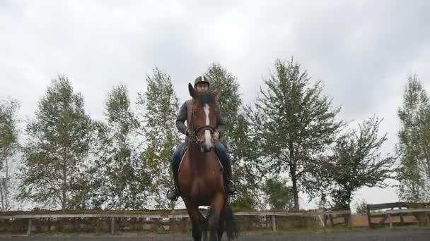 junger Mann reitet im Freien. Jockey beim Reiten in der Manege auf dem Bauernhof an einem Sommertag. schöne Natur im Hintergrund. Hengst aus nächster Nähe. Liebe zu Tieren. Zeitlupe