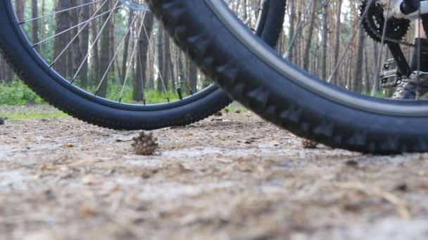 Dva motorkáři začít na kolech přes lesní cestu. Přátel, jízda na kole lesem. Nízký úhel pohledu