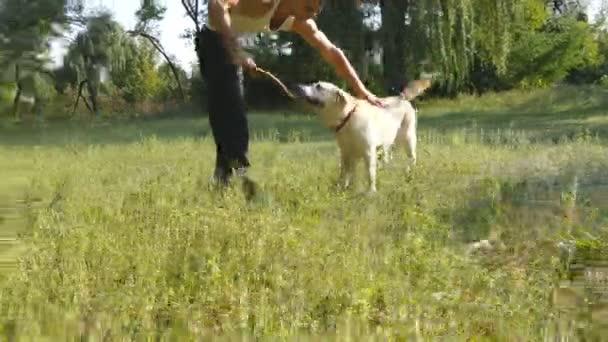 Mladý muž a pes hrát venkovní na přírodě. Labradorský nebo zlatý retrívr a jeho mužské majitel trávit čas spolu na zelené louce. Guy hlazení domácí zvíře. Detailní záběr
