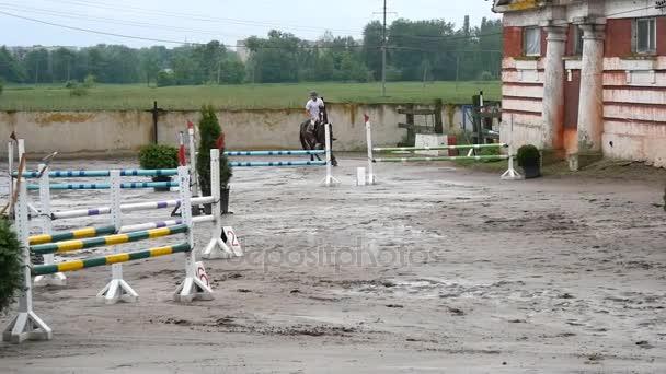 Profesionální žokej mužské jízdy na koních. Kůň tryskem a skákání přes bariéru v soutěži