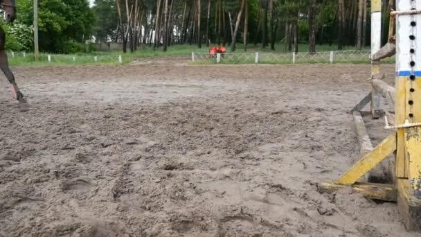 Nahaufnahme von Pferdefüßen. Pferd läuft auf dem Sand und springt durch eine Barriere. Zeitlupe
