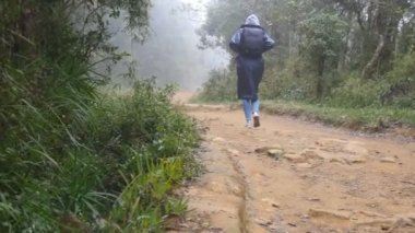 Young girl in raincoat jogging on wood trail during travel. Hiking woman with backpack running in tropical wet forest. Female tourist stepping on the jungle path. Slow motion Rear back view
