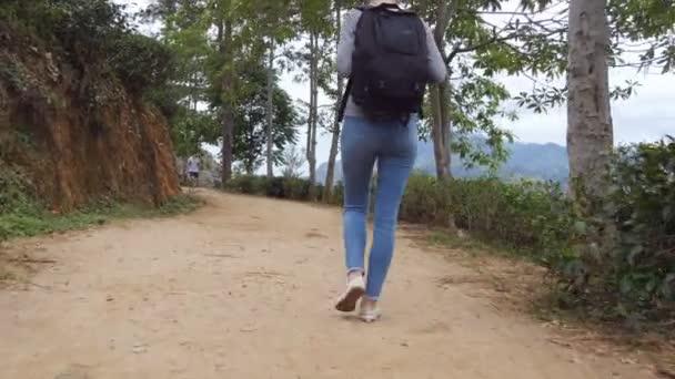 Mladá žena Turistický batoh chůzi na stezce v horách s krásnou přírodní krajinou v pozadí. Ženské tramp podél silnice tropické hory. Zdravý aktivní životní styl. Zadní pohled zezadu
