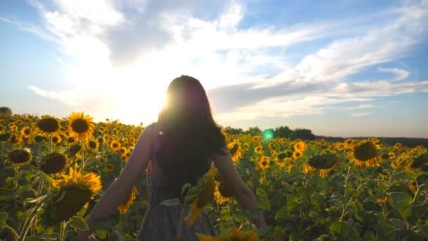 Krásná dívka stojící na žluté slunečnice pole a zvyšování rukou. Mladá žena šťastná zvednuté ruce v květinovou loukou. Koncept svobody. Zavřít pohled zpomalené zezadu zpět nahoru