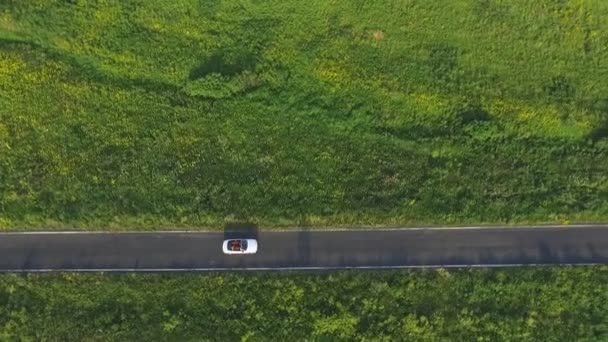 Aerial shot of white convertible car riding through empty rural road. Four young unrecognizable women travelling at cabriolet. Flying over auto driving at countryside road on summer day. Slow motion