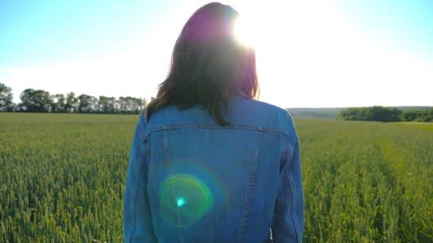 Vonzó nő áll a mező között zöld búza és megcsodálta festői táj. Fiatal lány élvezi a szabadságot vagy a napos természet jelenetét. Festői kilátás a vidékre, napkitörés a háttérben