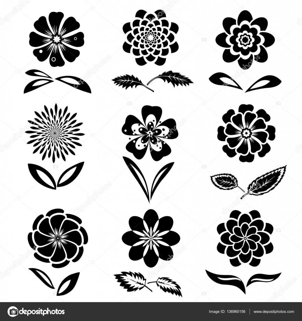 Dahlia Aster Daisy Chamomile Gowan Anemone Orchid Flower Set