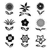 Fényképek Virág ikonok beállítása. Kamilla, Margaréta, orchidea, szegfűszeg. Virág-szimbólumok. Lapos grafikus jelek levelekkel. Fekete sziluettek a fehér háttér előtt. Vektor elszigetelt