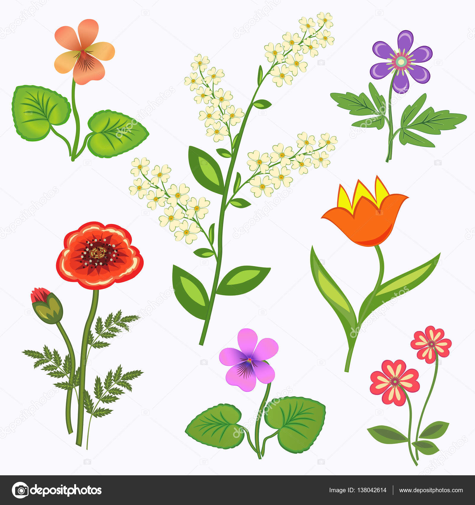 Flower set nasturtium primula viola anemone poppy tulip flower set nasturtium primula viola anemone poppy tulip bird cherry spring flowers floral symbols with leaves color icons may be used in cuisine biocorpaavc