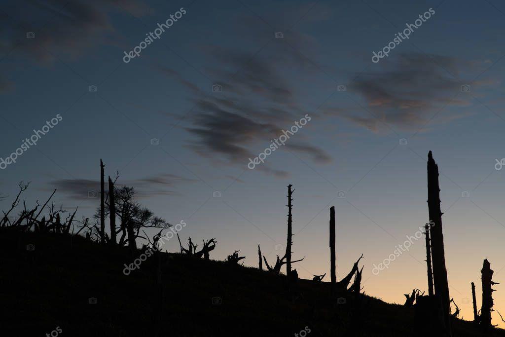 breaking dawn of Masaki mountain pass at Odaigahara,Nara,Japan