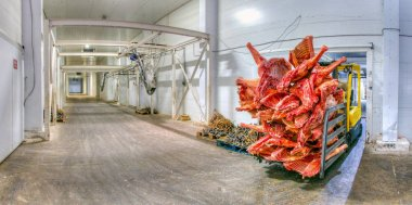 Frozen meat at a storage