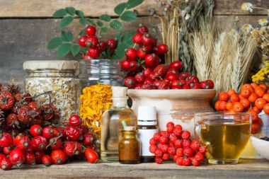 Medicinal plants and herbs composition: Dog rose, bunch branch Rosehips, types Rosa canina hips, essential oil. bunch, Tea with rosehip, Tansy, Anise, dried flowers of linden and chamomile - pharmacy