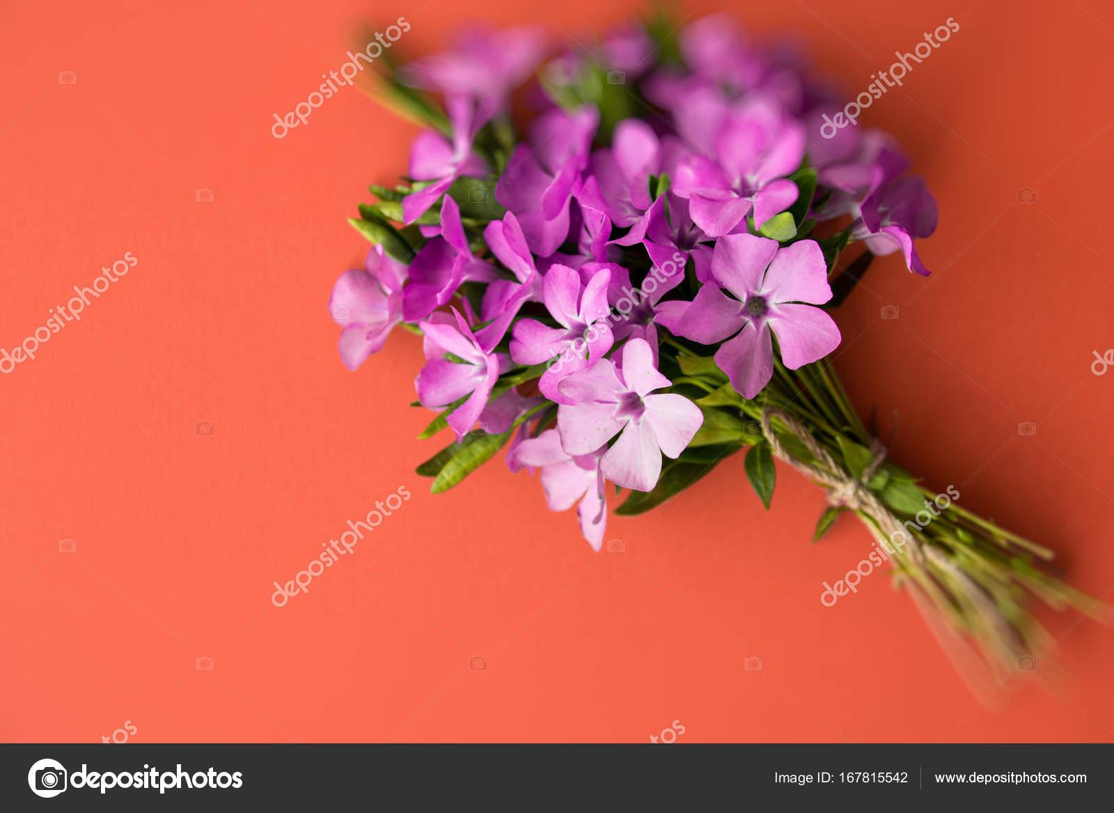 Vinca - flower bouquet. heart shape note Romantic date, invitation ...