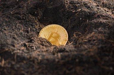 Mining Golden Bitcoin, coin on ground