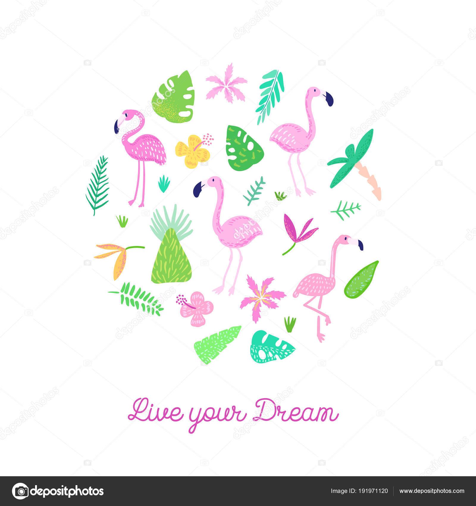 Imágenes Invitacion Cumple Infantil Diseño Tropical