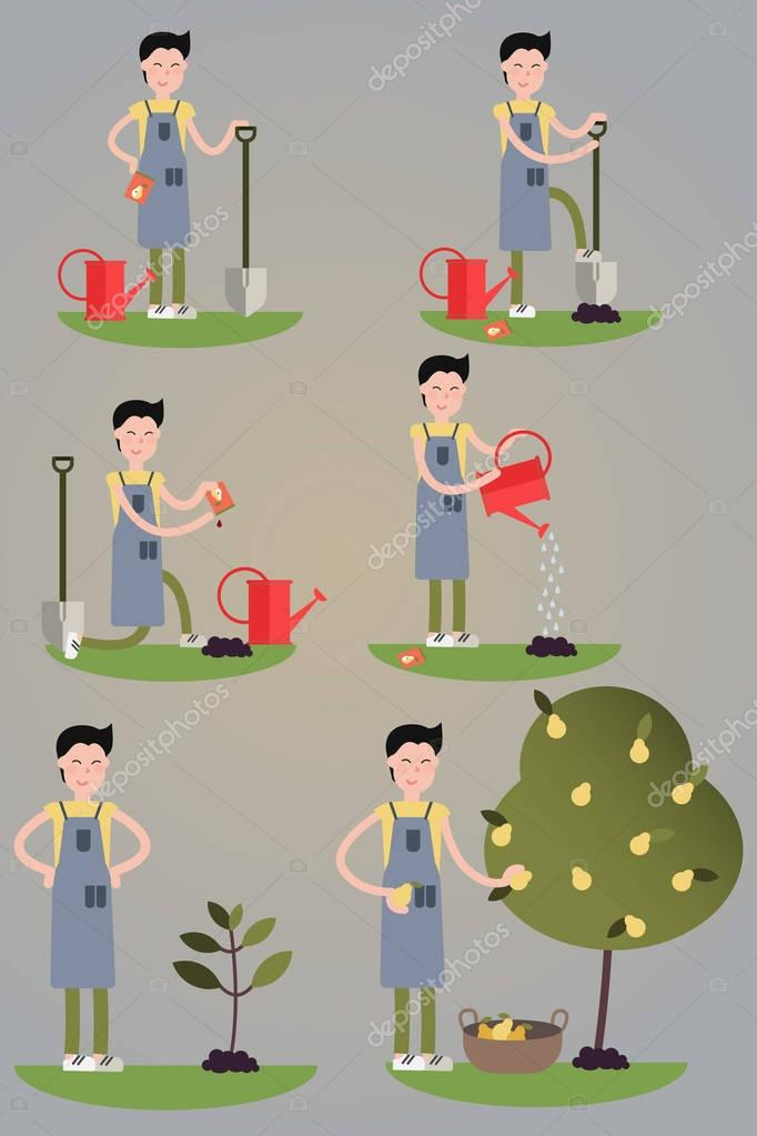 Images set of the cartoon character. Environmental activities. Planting tree process from seed to fruits. Isolated.
