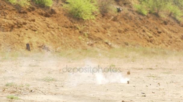 Kouřový granát exploduje na zemi v poušti v slowmotion