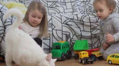 Two small baby boy and girl sitting on floor playing with toy cars and white cat